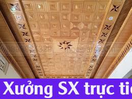 Chuyên đặt đóng ốp trần nhà tại Dĩ An 271819WKV